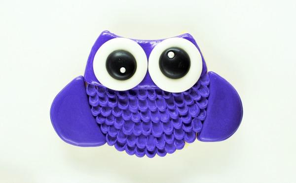Owl Cookies thebearfootbaker.com