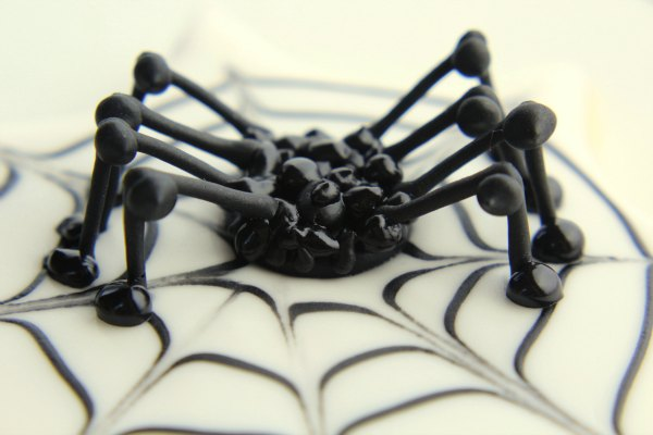 Spider Cookies thebearfootbaker.com