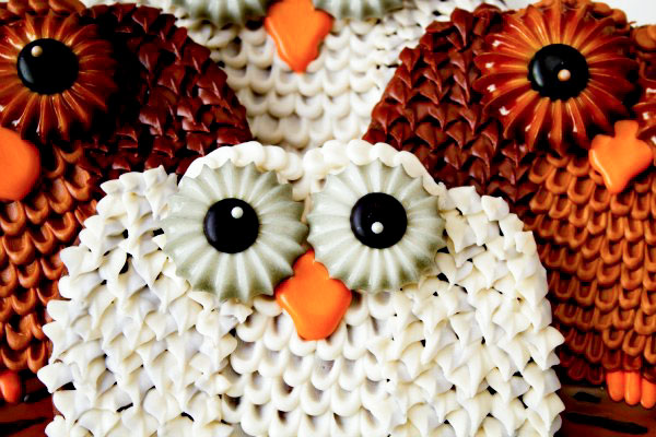Textured Owl Cookies via thebearfootbaker.com