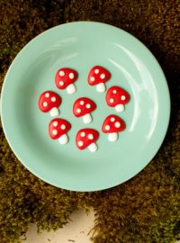 Toadstool Royal Icing Transfers thebearfootbaker.com