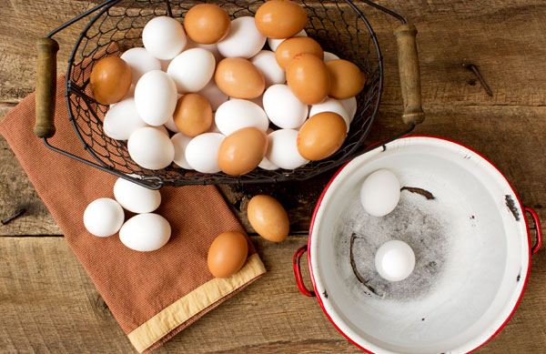 Eggs How to test for freshness by thebearfootbaker
