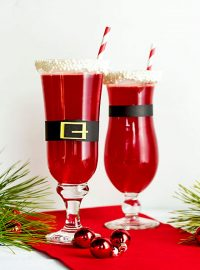 Easy Christmas Punch | The Bearfoot Baker