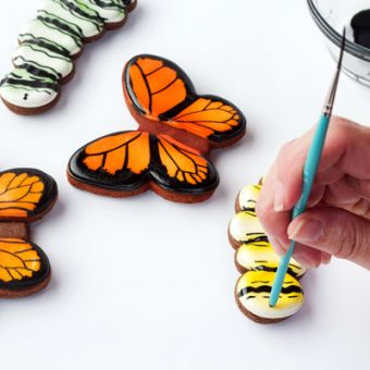 Easy Butterfly Cookies Decorated with Royal Icing-Tutorial thebearfootbaker.com