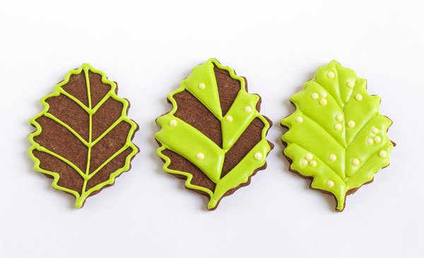 Easy Butterfly Cookies - simple leaf cookies www.thebearfootbaker.com
