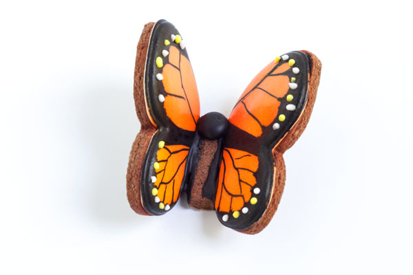Flying Butterfly Cookies - Decorated Sugar Cookies with Royal Icing via thebearfootbaker.com