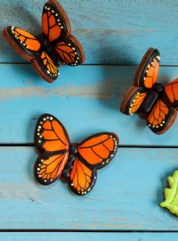 Flying Butterfly Cookies - Easy Butterfly cookies made with sugar cookies and royal icing www.thebearfootbaker.com