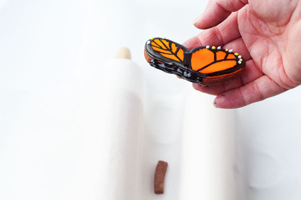 How to Make a Flying Butterfly Cookie via thebearfootbaker.com