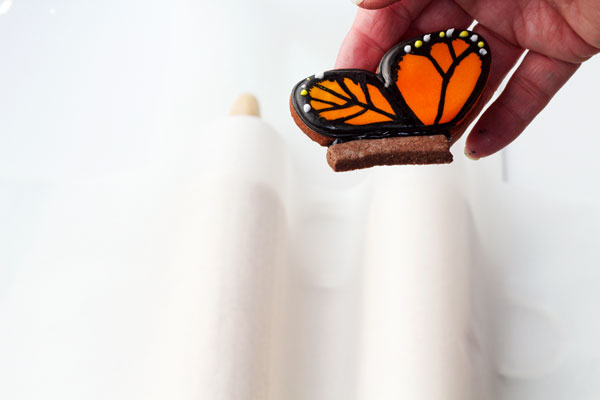 How to make a flying butterfly cookie with www.thebearfootbaker.com