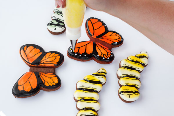 Simple Butterfly Cookies - Step by step tutorial with lots of pictures so you can make these cookies by thebearfootbaker.com