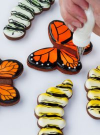Simple Butterfly Cookies - easy step by step tutorial on www.thebearfootbaker.com