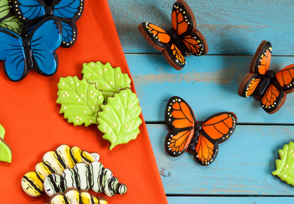 Simple Butterfly Cookies with a step by step tutorial www.thebearfootbaker.com