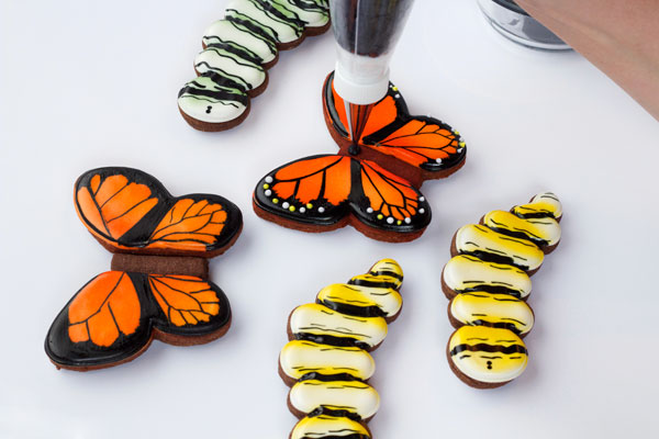 Simple butterfly cookies - step by step tutorial on how to decorate sugar cookies with royal icing from www.thebearfootbaker.com