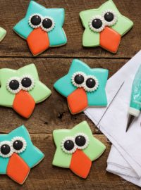 Easy Owl Cookies with a Star Cookie Cutter with www.thebearfootbaker.com
