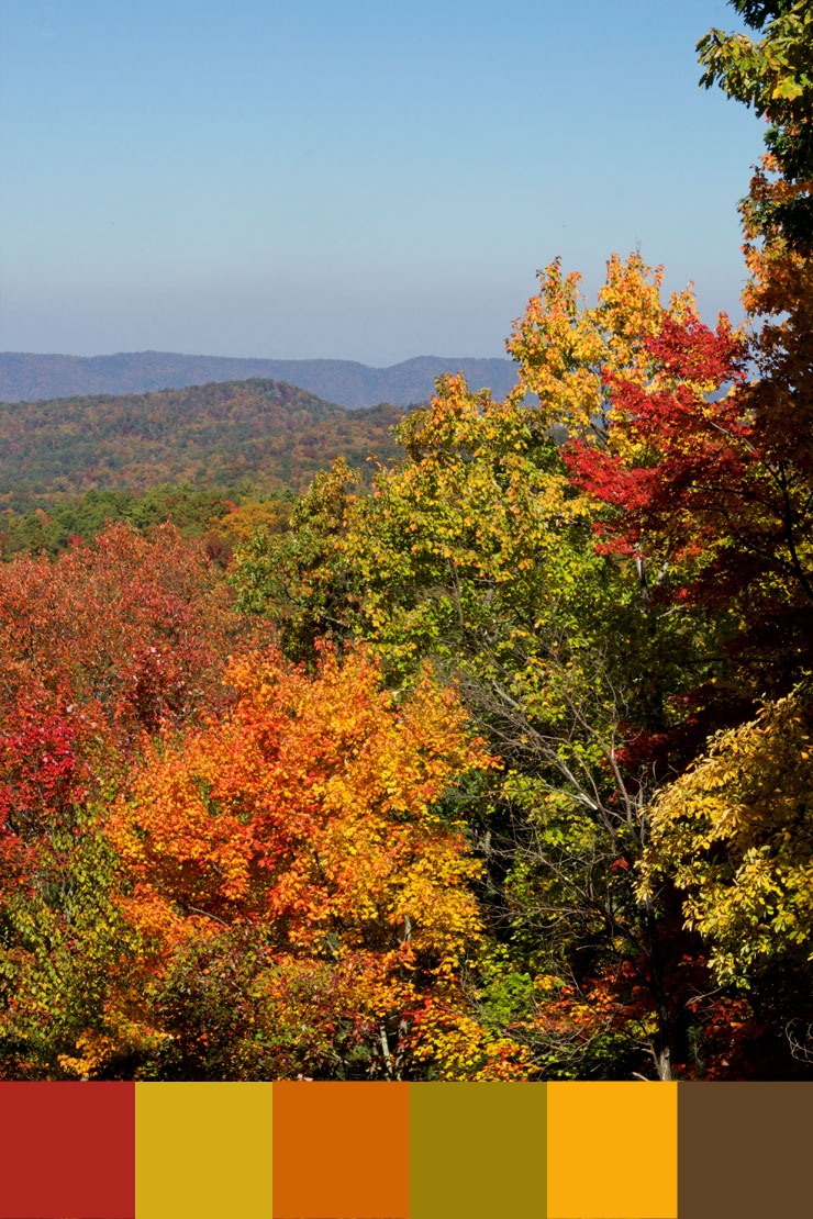 Fall Color Palette Inspired by The Smoky Mountains - Color Palette thebearfootbaker.com
