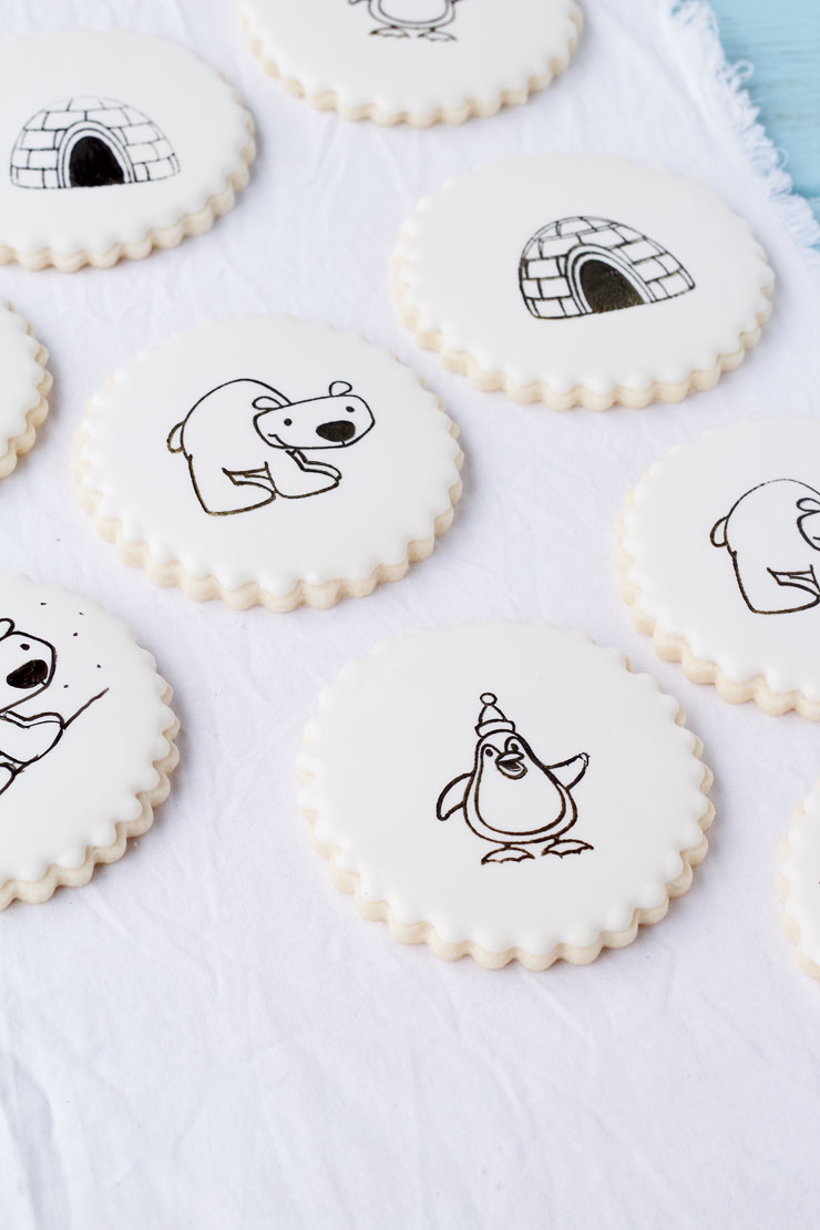 How to Stamp on a Cookie- decorating sugar cookies has never been easier by thebearfootbaker.com