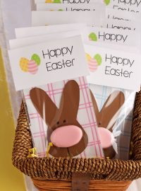 Simple Easter Cookie Card - Easter Bunny with A Sugar Cookie Nose Decorated with Royal Icing by thebearfootbaker.com