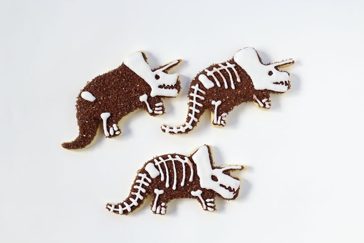 Simple Dinosaur Cookies -Sugar Cookies Decorated with Royal Icing by www.thebearfootbaker.com