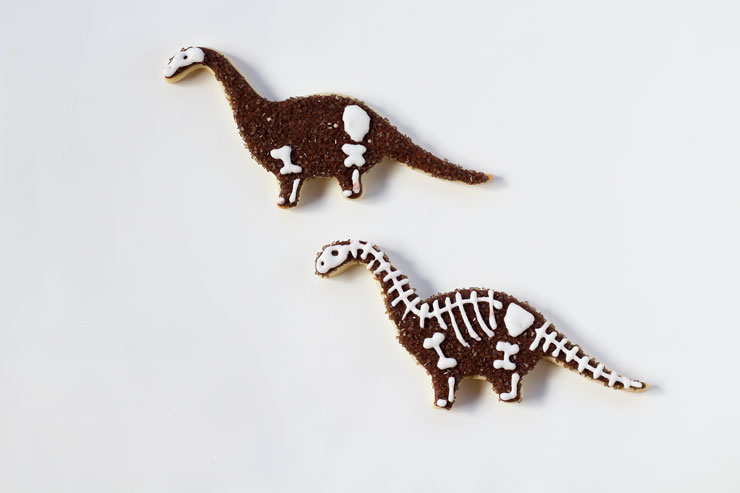 Simple Dinosaur Cookies -Sugar Cookies Decorated with Royal Icing via thebearfootbaker.com