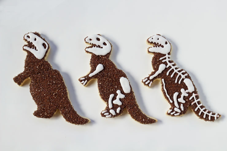 Simple Dinosaur Cookies -Sugar Cookies Decorated with Royal Icing with www.thebearfootbaker.com