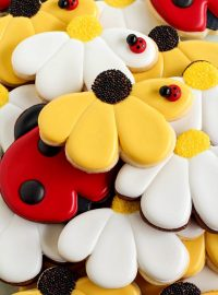Daisy Cookies with Simple Lady Bugs | The Bearfoot Baker