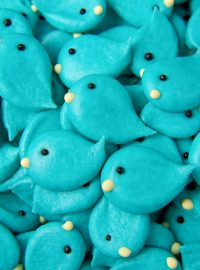Pretty Blue Bird Royal Icing Transfers by thebearfootbaker.com