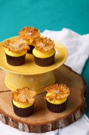 Dried Pineapple Flower Cupcake Toppers | The Bearfoot Baker