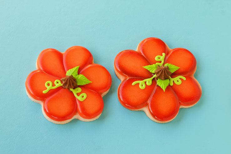 Easy Airbrushed Pumpkin Cookies   The Bearfoot Baker