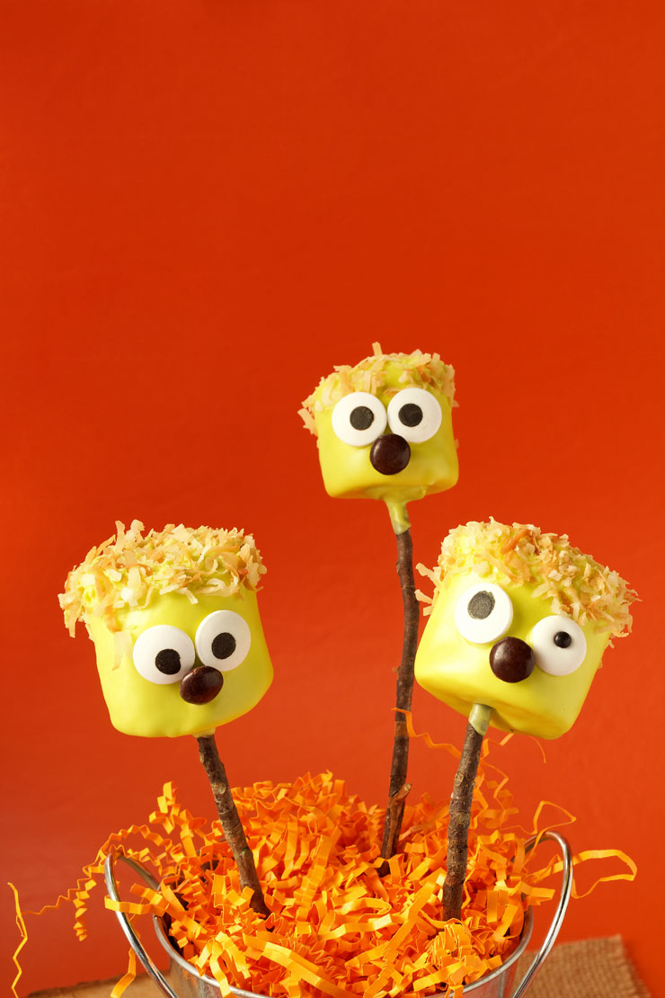 Halloween Marshmallow Pops | The Bearfoot Baker