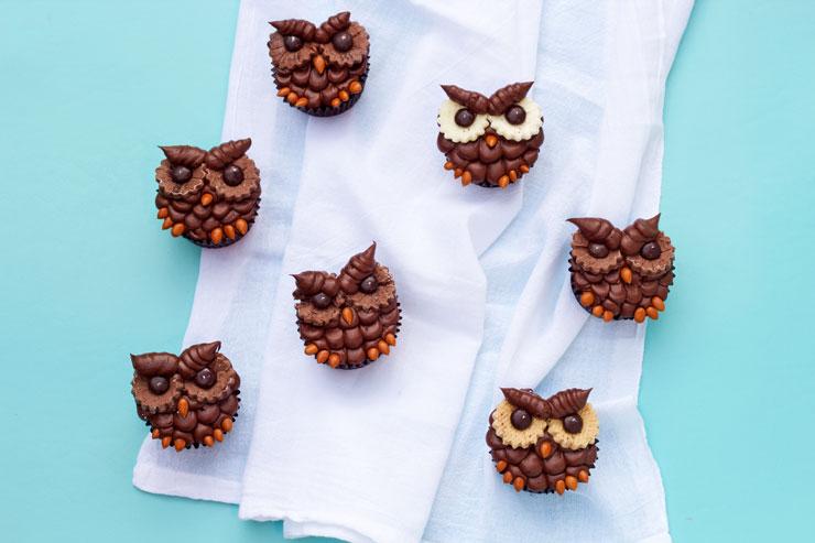 How to Make Easy Chocolate Owl Cupcakes | The Bearfoot Baker