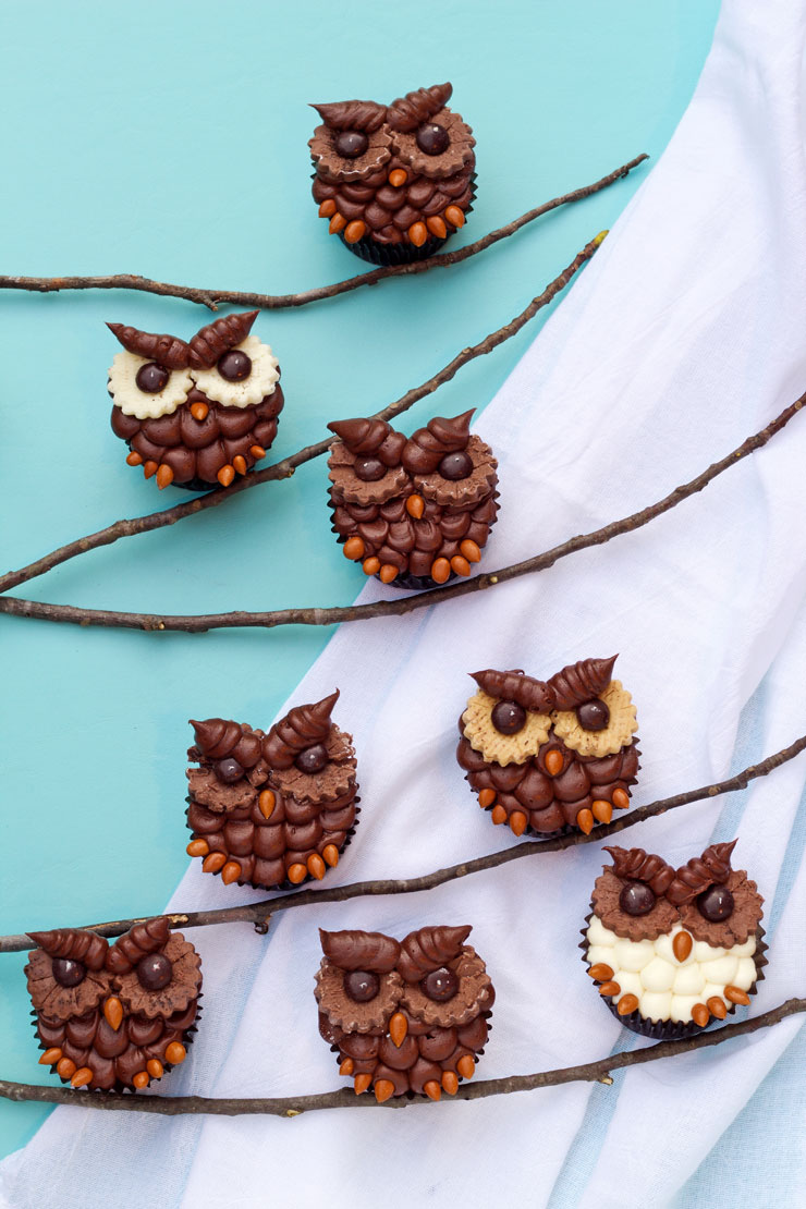 How to Make Simple Owl Cupcakes with a Video The Bearfoot Baker