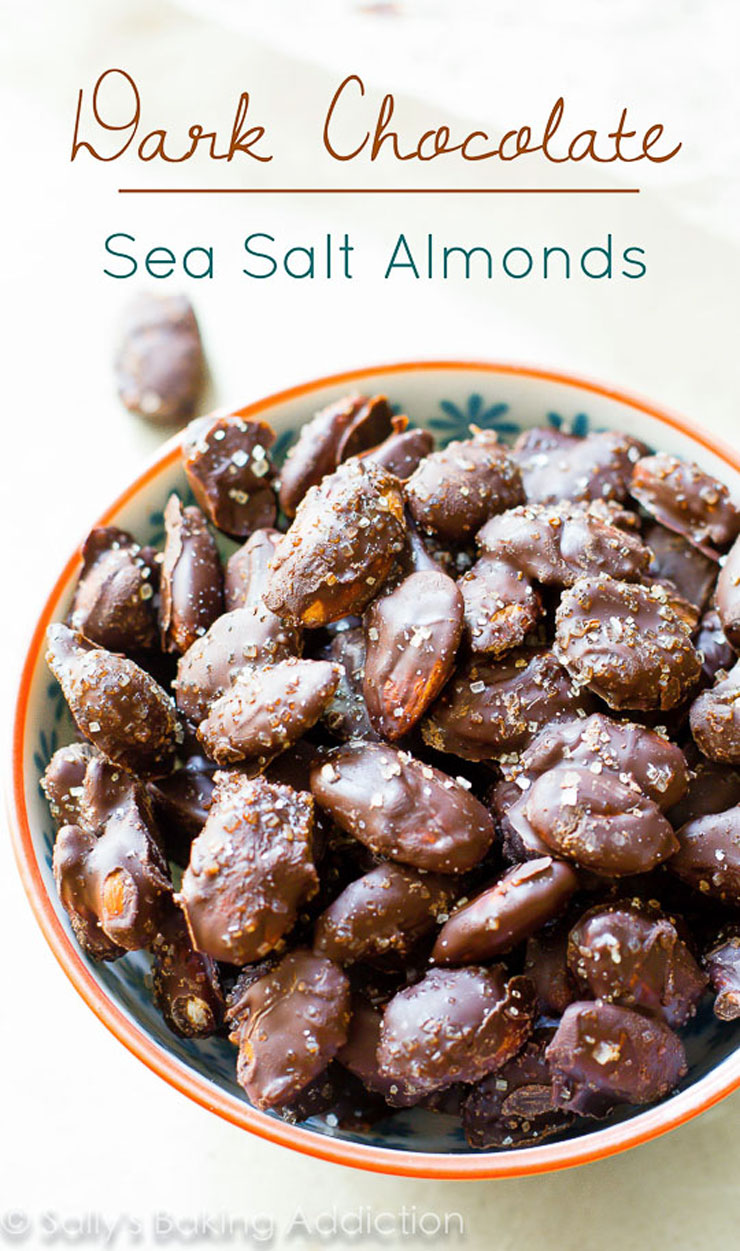 Dark Chocolate Sea Salt Almonds Homemade Food Gifts for Christmas | The Bearfoot Baker