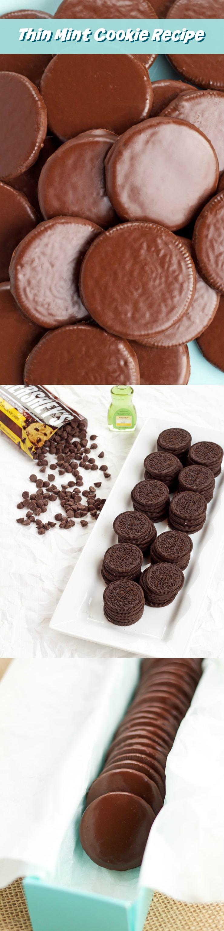 Thin Mint Cookie Recipe The Bearfoot Baker