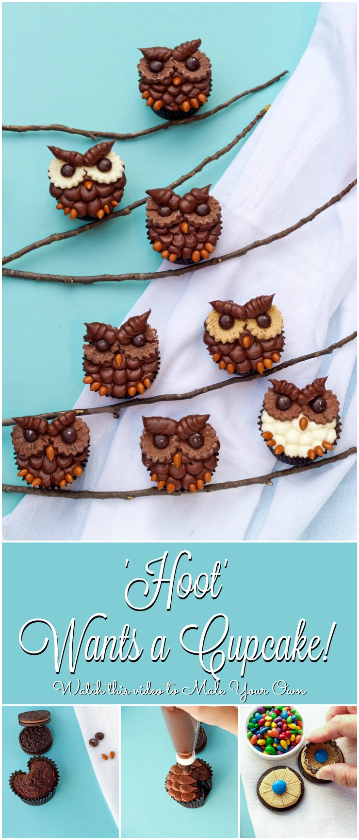 How to Make Simple Owl Cupcakes Tutorial with a Video | The Bearfoot Baker