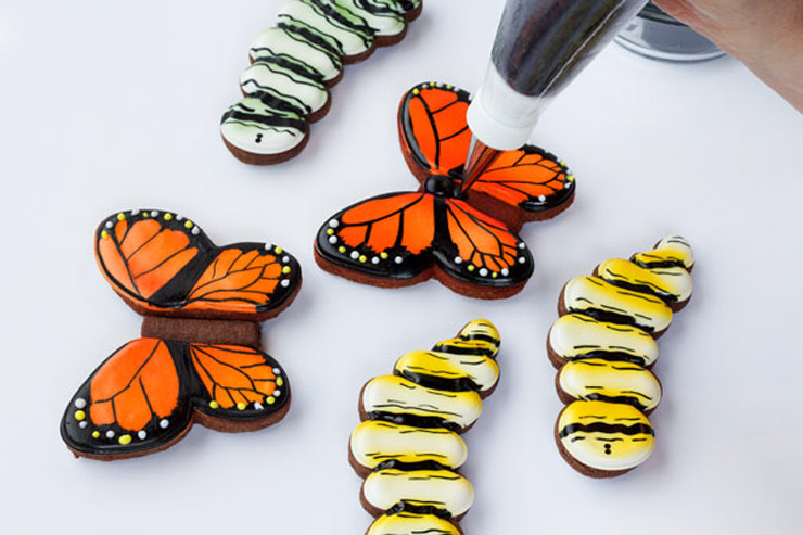 Butterfly Cookies for Valentine's Day | The Bearfoot Baker