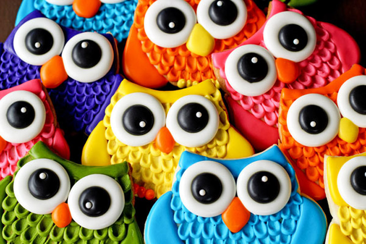 Simple Owl Cookies for Valentine's Day | The Bearfoot Baker