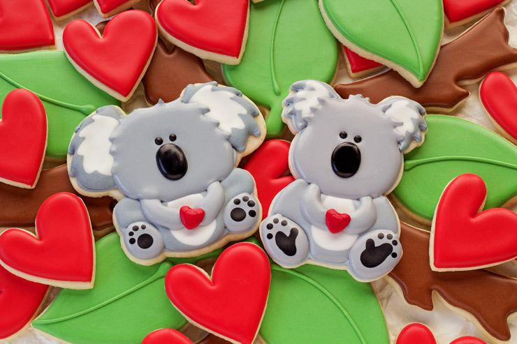 Simple Decorated Koala Cookies | The Bearfoot Baker