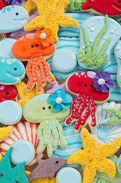 How to Make Jellyfish Cookies with Video | The Bearfoot Baker