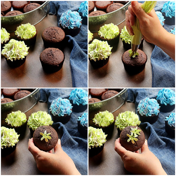 Make Simple Hydrangea Cupcakes with a How to Video | The Bearfoot Baker