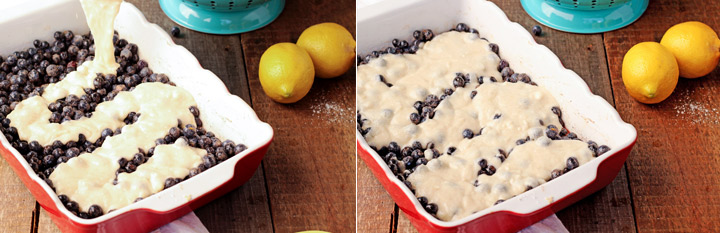 How to Make a Simple Blueberry Cobbler   The Bearfoot Baker