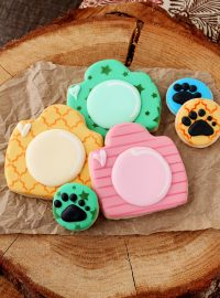 How to Make These Fun Little Camera Cookies | The Bearfoot Baker