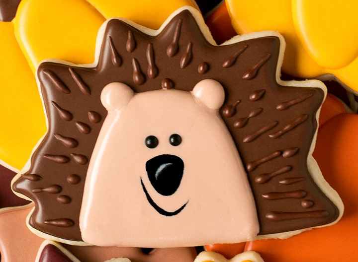 How to Make Simple Hedgehog Cookies - With a How to Video   The Bearfoot Baker