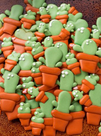 How to Make Cactus Candy Decorations with a Video | The Bearfoot Baker