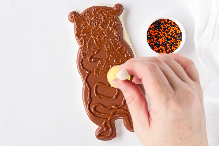 Fun Furry Bear Cookies | The Bearfoot Baker