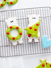 Simple Cute Decorated Bear Cookies | The Bearfoot Baker