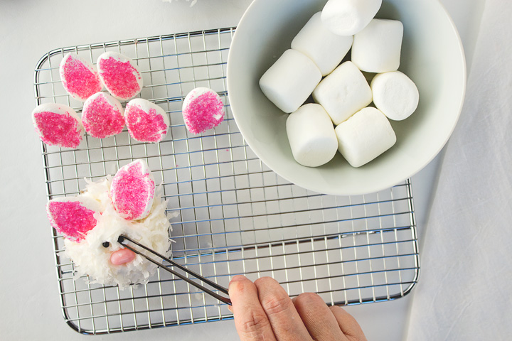 How to Make Fun Little Cute Bunny Cupcakes for Easter | The Bearfoot Baker