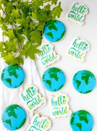 Super Fun Happy Earth Day Cookies You Will Love | The Bearfoot Baker