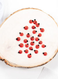 lady bug, lady bug candy, royal icing transfer, royal icing, sugar cookies