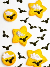bat, royal icing transfer, Halloween, animal