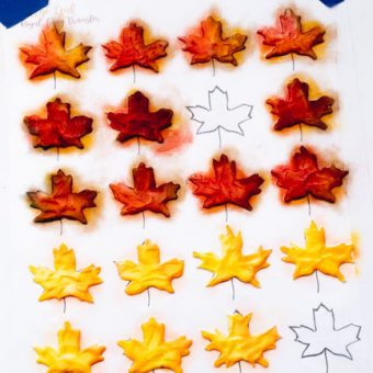 the bearfoot baker, royal icing transfers, royal icing leaves, candy decorations, edible leaves