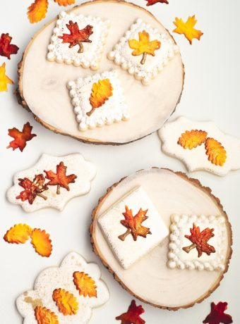 The Bearfoot Baker, fall cookies, leaf cookies, royal icing transfers, airbrushed cookies, autumn cookies, sugar cookies, royal icing
